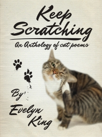 keep_scratching